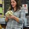 MET 092117 Katie Miller Skull