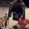 MET 091617 BAT FEST MARCATO