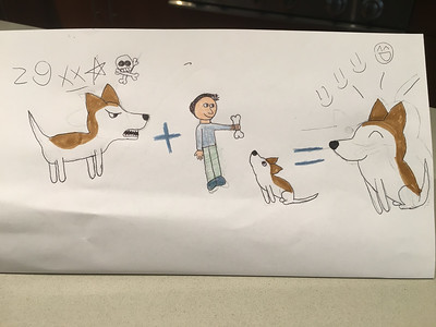 Amelia illustrates how dog training can fix a dog's bad behavior