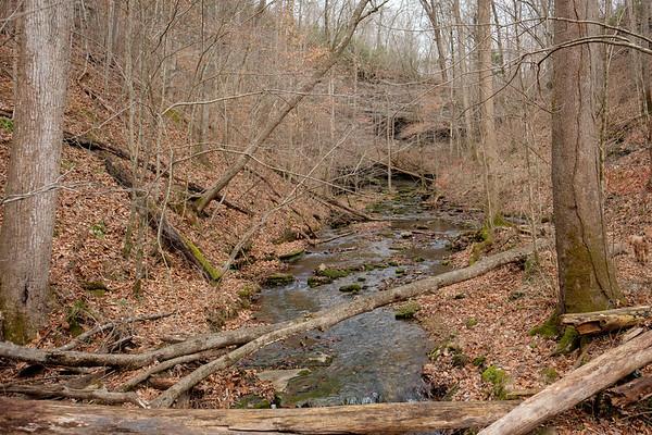 Short Springs Hike