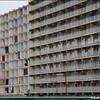 20170217 flats DSC_0610