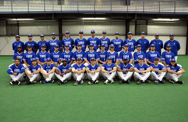 Baseball Team 2017