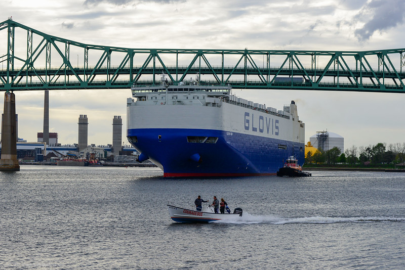 The auto carrier Glovis Sun heads out to sea under the Toblin Bridge in Boston Harbor.