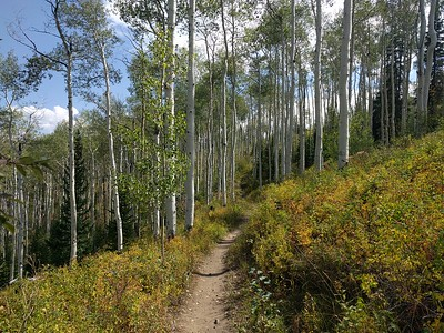 The Government Trail running from Snowmass to the town of Aspen