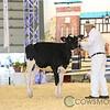 Supreme17_Holstein-4608