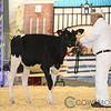 Supreme17_Holstein-4609