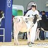 Supreme17_Holstein-4612