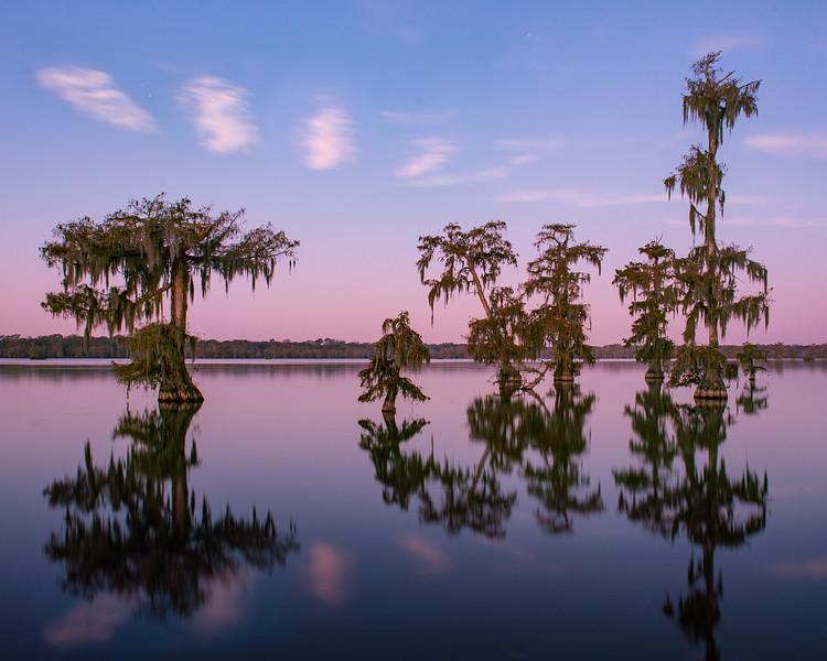 Bayou Oasis