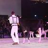 SwissExpo2017_Holstein_IMG_9262