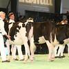 SwissExpo2017_Holstein_IMG_8931