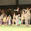 SwissExpo2017_Holstein_IMG_9194