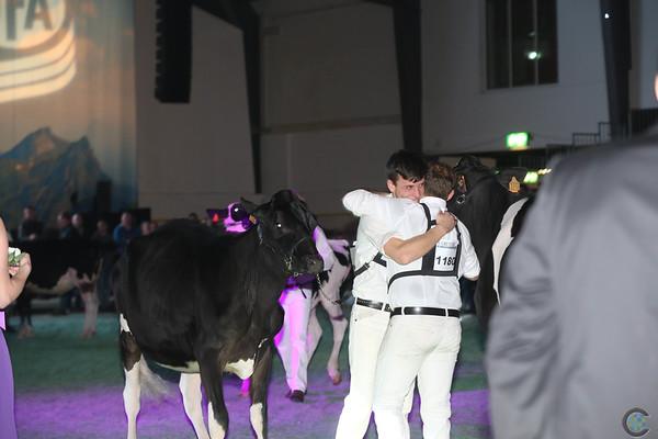 SwissExpo2017_Holstein_IMG_9309