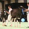 SwissExpo2017_Holstein_IMG_8856