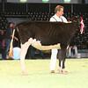 SwissExpo2017_Holstein_IMG_8812