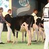 SwissExpo2017_Holstein_IMG_8679