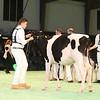 SwissExpo2017_Holstein_IMG_8686