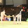 SwissExpo2017_Holstein_IMG_9209