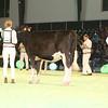 SwissExpo2017_Holstein_IMG_8980