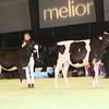 SwissExpo2017_Holstein_IMG_8738