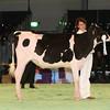 SwissExpo2017_Holstein_IMG_8821