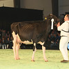 SwissExpo2017_Holstein_L32A1226