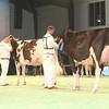 SwissExpo2017_Holstein_IMG_9695