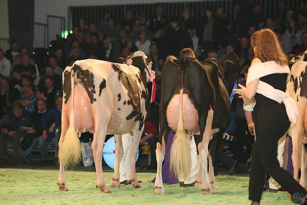 SwissExpo2017_Holstein_L32A1152