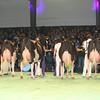 SwissExpo2017_Holstein_L32A1216