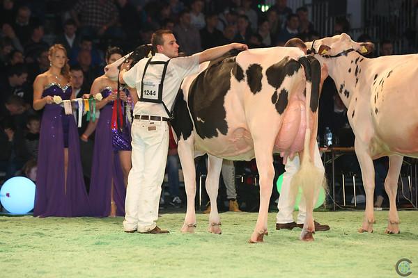 SwissExpo2017_Holstein_L32A1031