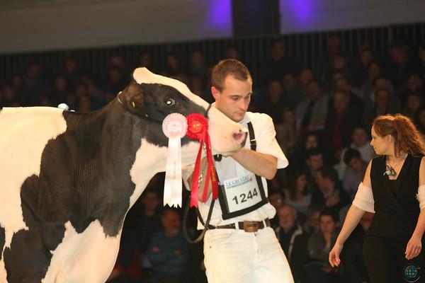 SwissExpo2017_Holstein_L32A1043
