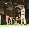 SwissExpo2017_Holstein_L32A1160