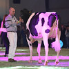 SwissExpo2017_Holstein_L32A1333