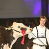 SwissExpo2017_Holstein_IMG_9595