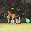SwissExpo2017_Holstein_L32A1065