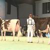 SwissExpo2017_Holstein_IMG_9687