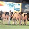 SwissExpo2017_Holstein_L32A1081