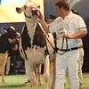 SwissExpo2017_Holstein_L32A1140