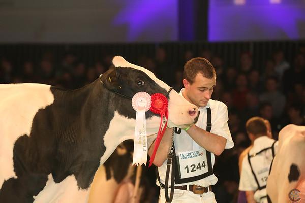 SwissExpo2017_Holstein_L32A1044