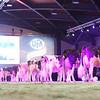 SwissExpo2017_Holstein_L32A1322