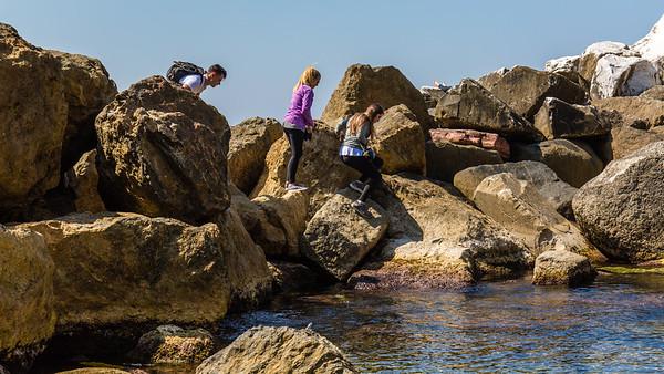 Rocks at the edge.