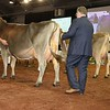 UK_Dairy_Day_2017_L32A0136