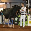 UK_Dairy_Day_2017_L32A9766