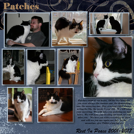 Patches RIP