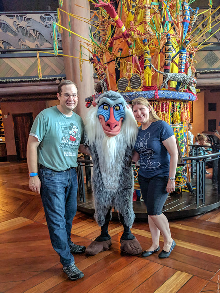 Visiting with Rafiki