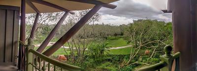 Savanna view panorama