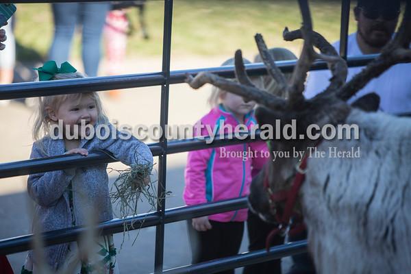 171125_Reindeer02_JW.jpg