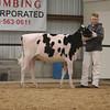 WesternSpringNtl17_Holstein_1M9A4477