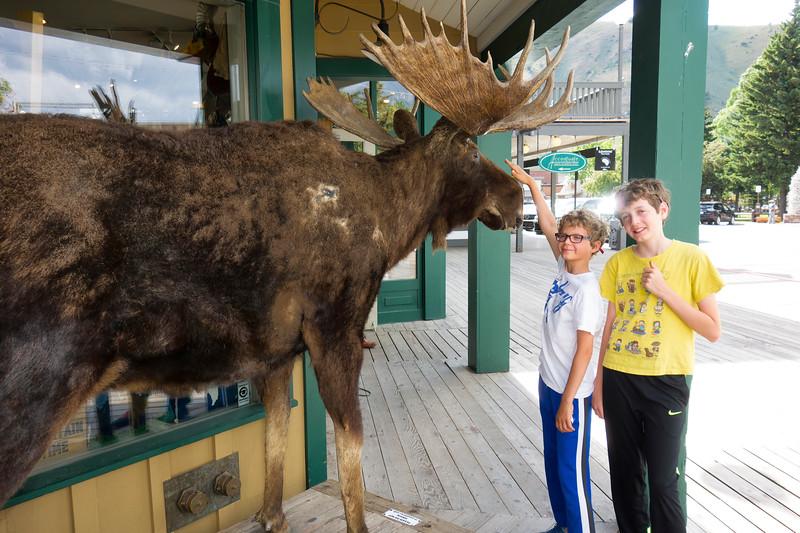 Jackson, Jackson Hole, Wyoming