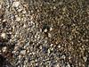 Kieselsteine an der Aare beim Salzhüsliweg in Olten © Patrick Lüthy/IMAGOpress.com