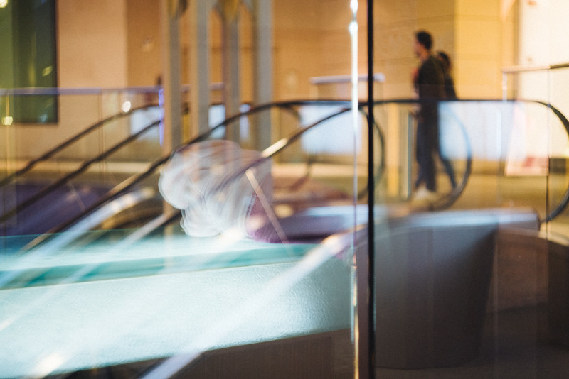 Escalator Reflections